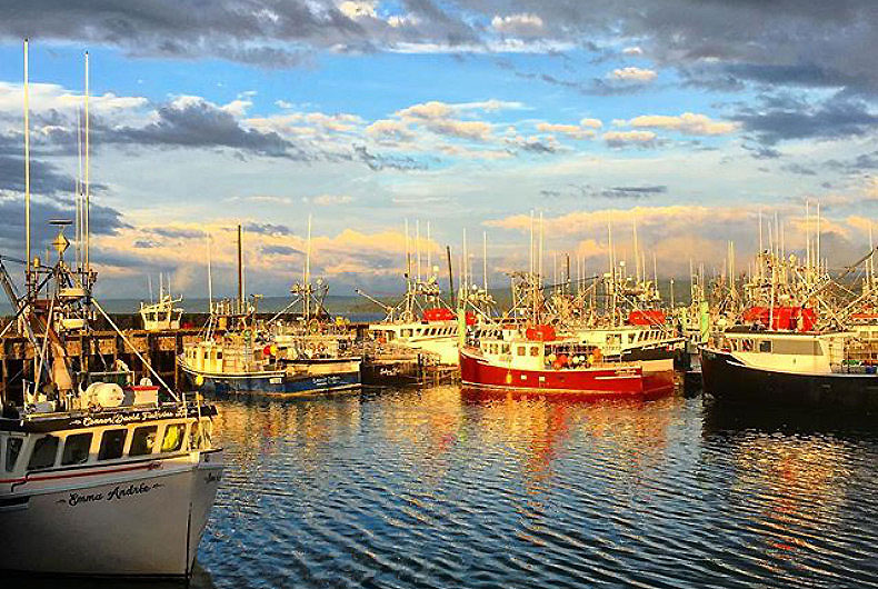 Lobster Boats on the Digby Wharf